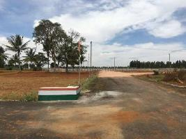 6 Acre Farm Land for Sale in Pardi