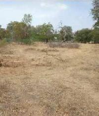 16 Acre Farm Land for Sale in Lepakshi, Anantapur