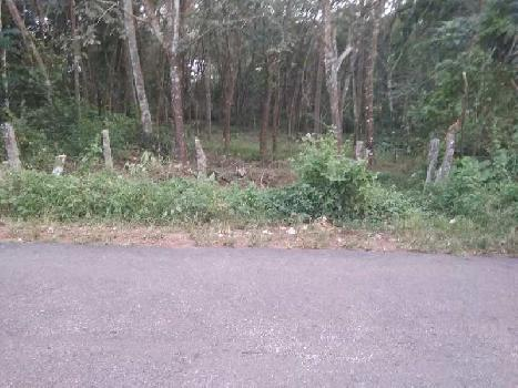 14 Cent Residential Plot for Sale in Chengannur, Alappuzha
