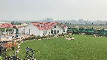 3 BHK Farm House for Sale in Sector 135