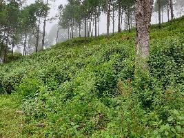 129600 Sq.ft. Residential Plot for Sale in Bhimtal, Nainital