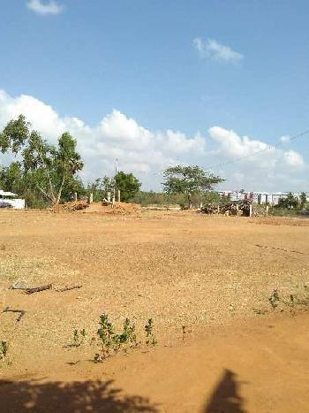 6400 Sq.ft. Residential Plot for Sale in Kurinji Nagar, Pudukkottai