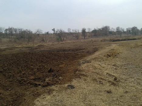 6 Acre Farm Land for Sale in Shahapur, Thane