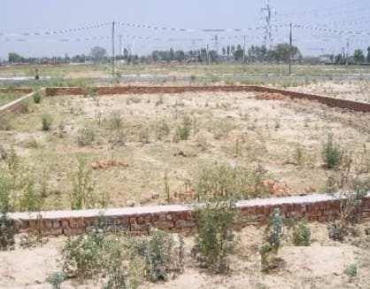 1000 Sq.ft. Residential Plot for Sale in Ashok Nagar, Bilaspur
