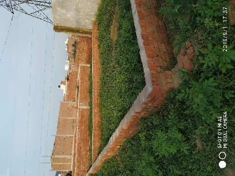 100 Sq. Yards Residential Plot for Sale in Sector 81 Noida