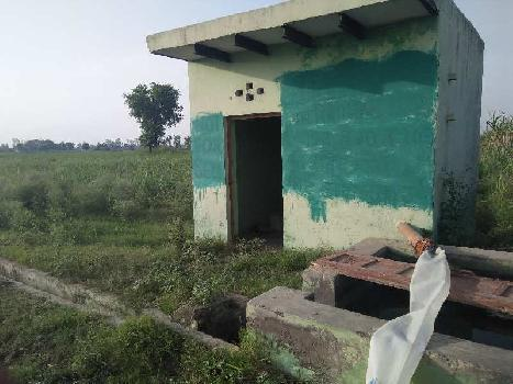 3 Acre Farm Land for Sale in Dhaulana, Hapur