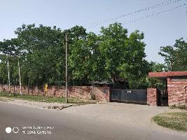 5200 Sq. Yards Commercial Land for Rent in Sector 58, Mohali
