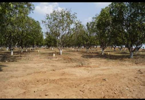 160 Sq. Yards Residential Plot for Sale in Adikmet, Hyderabad