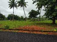 Property for Sale in Sagara, Shimoga | Buy/Sell Properties