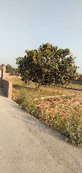 6672 Sq.ft. Commercial Land for Sale in Delhi Road, Roorkee