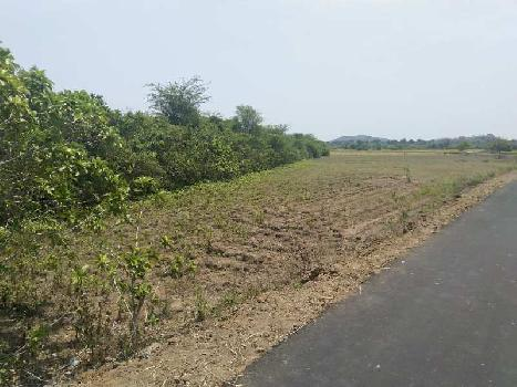 82 Cent Farm Land for Sale in Acharapakkam, Kanchipuram