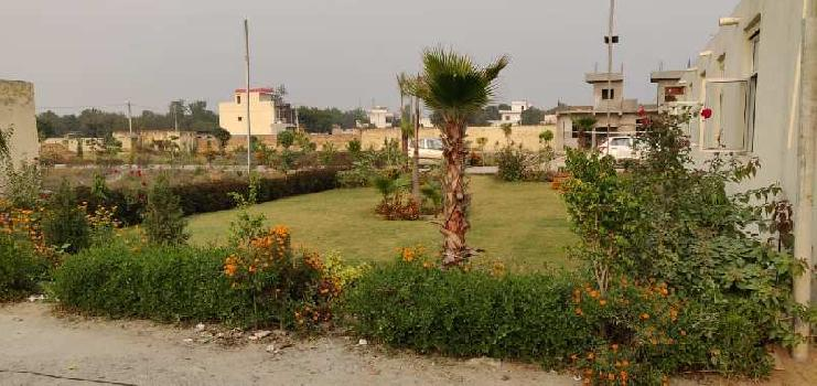 815 Sq.ft. Residential Plot for Sale in Noida Extension