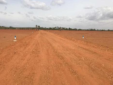 50 Cent Farm Land for Sale in Sundaravelpuram, Thoothukudi