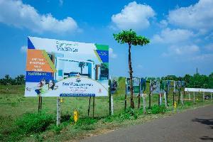 167 Sq. Yards Residential Plot for Sale in Tagarapuvalasa, Visakhapatnam