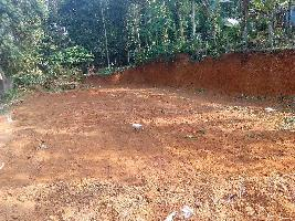 10 Cent Residential Plot for Sale in Mallappally, Pathanamthitta