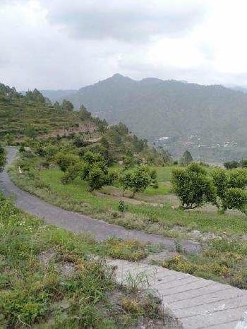 5050 Sq. Meter Commercial Land for Sale in Neelkanth Road, Rishikesh