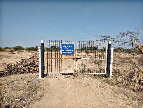 3 Bigha Farm Land for Sale in Detroj Rampura, Ahmedabad