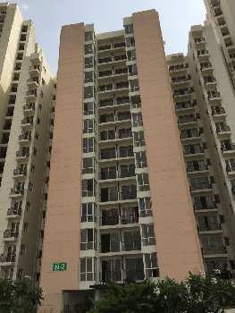 2 BHK 963 Sq.ft. Residential Apartment for Rent in Sector 51 Noida