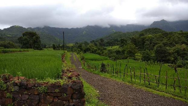5 Acre Farm Land for Sale in Vaibhavwadi, Sindhudurg