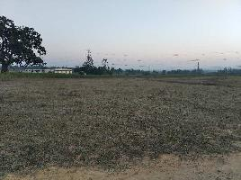 10 Acre Residential Plot for Sale in Singrauli, Rewa