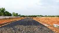 1000 Sq.ft. Residential Plot for Sale in N.S.Nagar, Dindigul, Dindigul