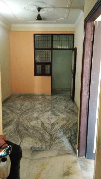 1 BHK 500 Sq.ft. Residential Apartment for Rent in Sector 121 Noida