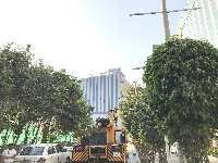 Office Space For Rent In Madhapur Hyderabad Rental Office Space In Madhapur Hyderabad