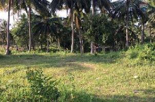 60 Sq.ft. Farm Land for Sale in Anakapalle, Visakhapatnam