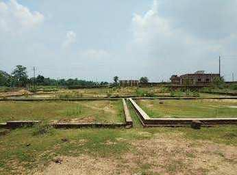 1200 Sq.ft. Residential Plot for Sale in Haldipokhar market Purbi Singhbhum