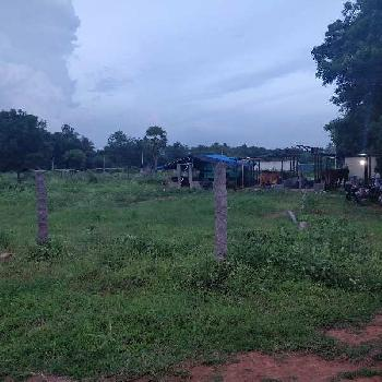 1 Acre Farm Land for Rent in Kompally, Hyderabad