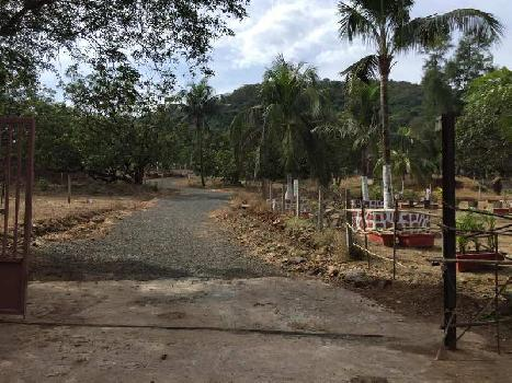 501 Sq. Meter Farm Land for Sale in Alibag, Raigad