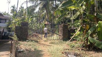 22 Cent Residential Plot for Sale in Karaparamba, Kozhikode