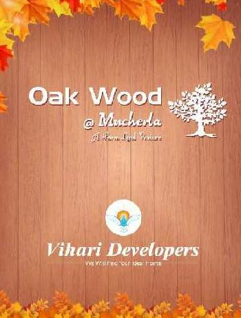 242 Sq. Yards Farm Land for Rent in Kadthal, Hyderabad