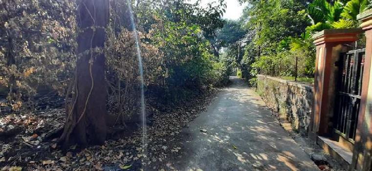 19 Guntha Residential Plot for Sale in Varasoli, Alibag, Raigad