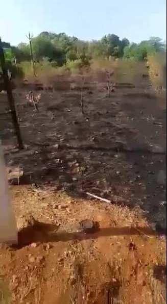 45000 Sq.ft. Farm Land for Sale in Vaibhavwadi, Sindhudurg