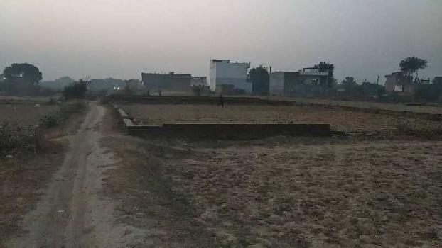 1360 Sq.ft. Farm Land for Sale in Ramana, Varanasi