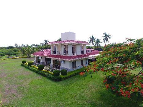 140 Bigha Farm Land for Sale in Garhmukteshwar, Hapur