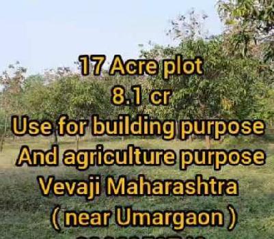 17 Acre Farm Land for Sale in Palghar, Thane