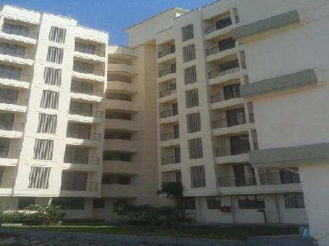 1 BHK 500 Sq.ft. Residential Apartment for Rent in Naigaon East, Mumbai