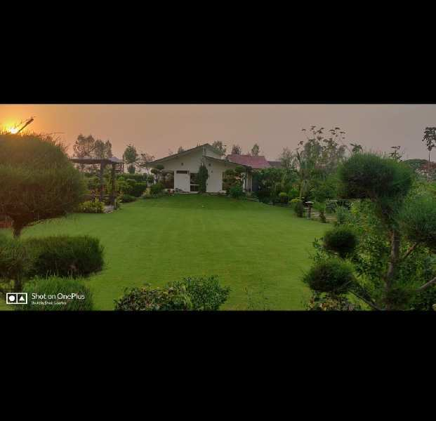 3 BHK 2500 Sq. Yards Farm House for Sale in Sector 150 Noida