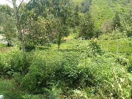 9 Acre Residential Plot for Sale in Kotagiri, Ooty