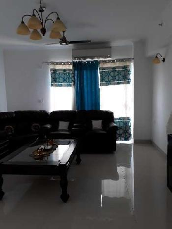3 BHK 1750 Sq.ft. Residential Apartment for Rent in Sector 93a Noida