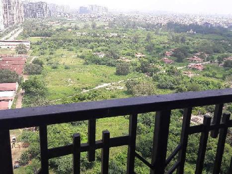 3 BHK 1643 Sq.ft. Residential Apartment for Sale in Sector 104 Noida