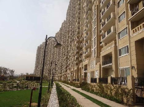 3 BHK 1600 Sq.ft. Residential Apartment for Sale in Sector 104 Noida
