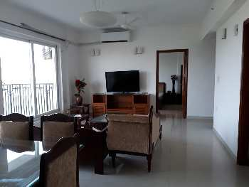 3 BHK 1759 Sq.ft. Residential Apartment for Sale in Sector 104 Noida