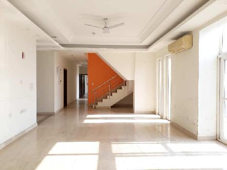 5 BHK 5600 Sq.ft. Residential Apartment for Rent in Sector 104 Noida