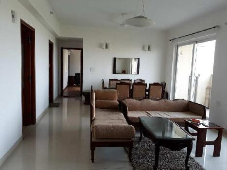 3 BHK 1759 Sq.ft. Residential Apartment for Rent in Sector 104 Noida