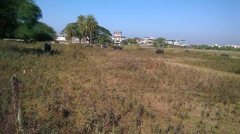 Agricultural/Farm Land for Sale in Vasai West, Mumbai - 4356 Sq. Feet