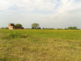 100 Acre Farm Land for Sale in Civil Lines, Budaun