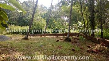 13 Cent Residential Plot for Sale in Pottammal, Kozhikode
